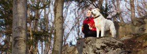dog friendly holiday pitlochry