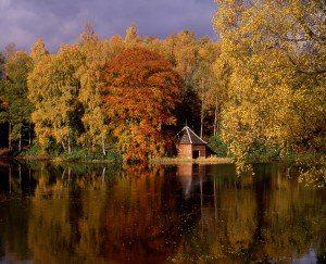 Autumn on Loch Dunmore