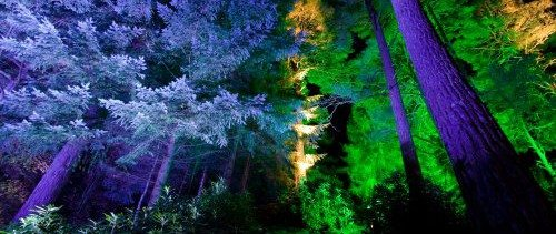 pitlochry enchanted forest hotel