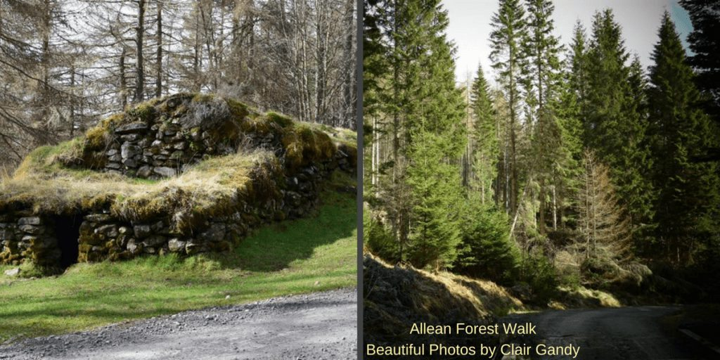places to stay in Pitlochry - Allean ForestWalk