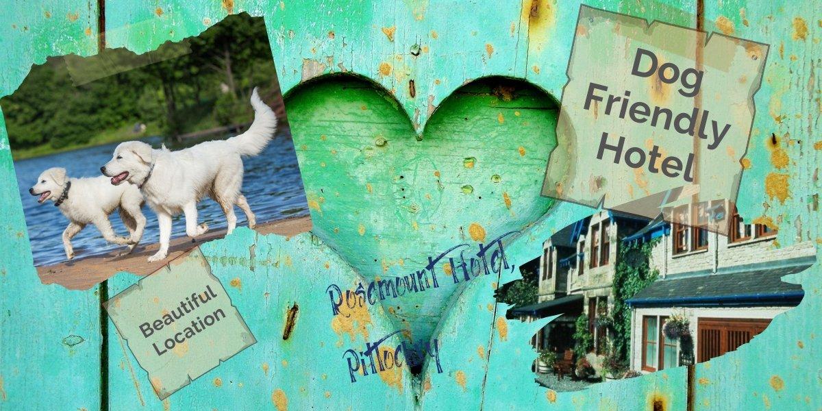 dog friendly holidays Pitlochry