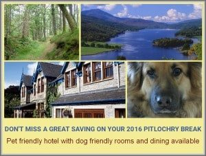 scotland pet friendly hotels