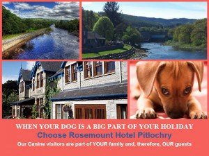 pets welcome hotel pitlochry