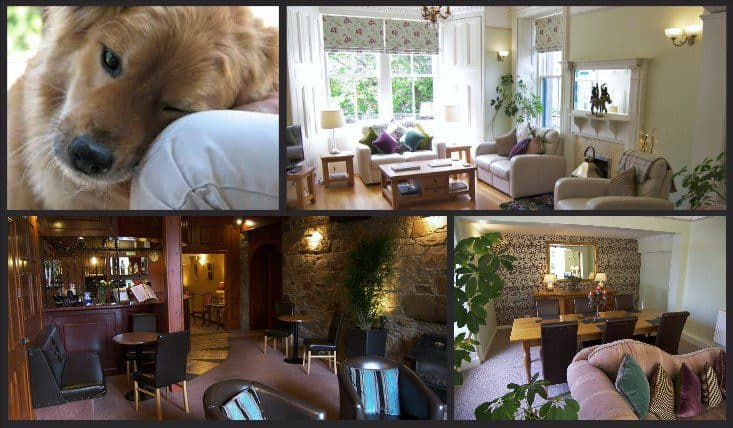 Hotel Breaks Scotland Dog Friendly