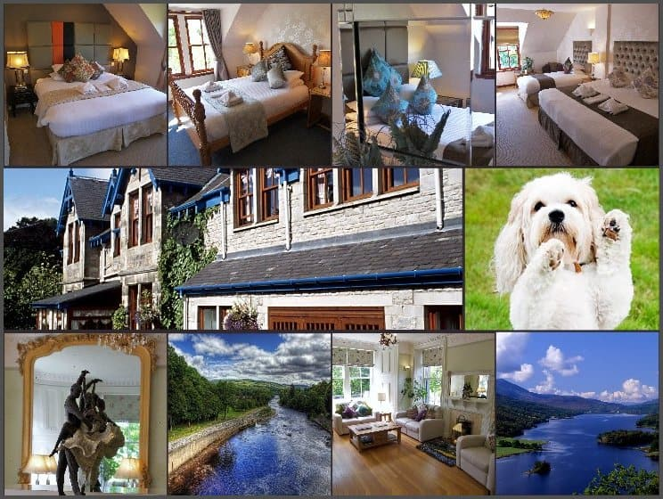 pet friendly holidays Scotland
