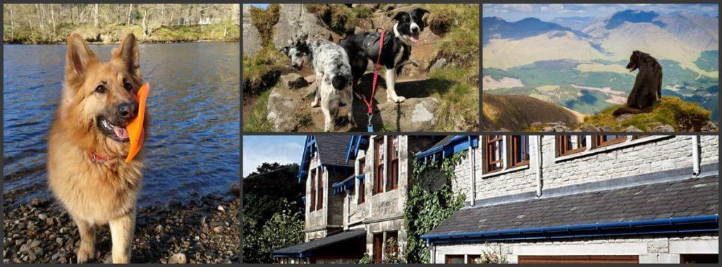 Dog friendly accommodation Pitlochry Scotland
