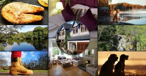 stay, walk and dine with your dog at Rosemount Hotel Pitlochry