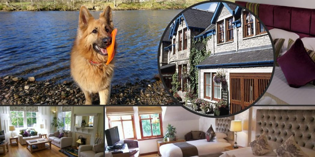 dog friendly hotels Perthshire