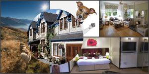 Pitlochry hotels that accept pets
