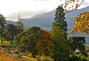Loch Tay PItlochry Autumn photography