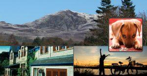 pet friendly hotel in Pitlochry