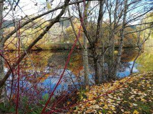 Autmun Break in Pitlochry